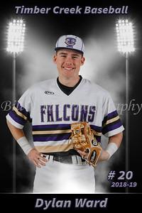 Dylan Ward Baseball 18-19 flat