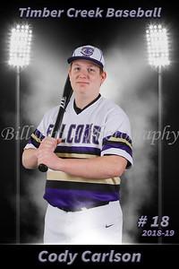 Cody Carlson Baseball 18-19 flat
