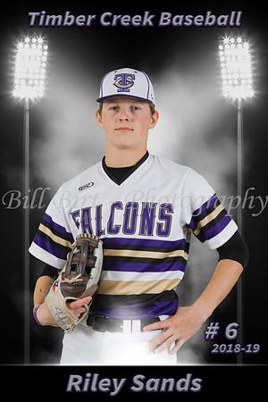 Riley Sands Baseball 18-19 flat