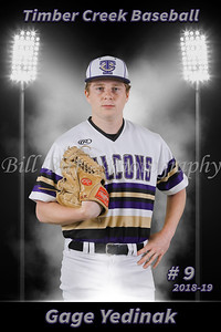 Gage Yedinak Baseball 18-19 flat