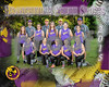sb-ponytails team BaseballPSposter_8x10H