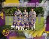 cp-purp team BaseballPSposter_8x10H