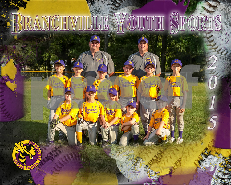 cp-gold team BaseballPSposter_8x10H