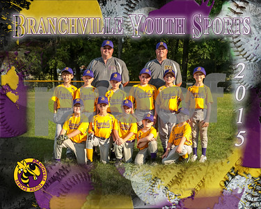 Branchville Youth Baseball/Softball