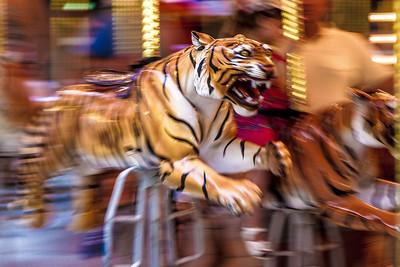 Tigers at Comerica Park 2013-5547