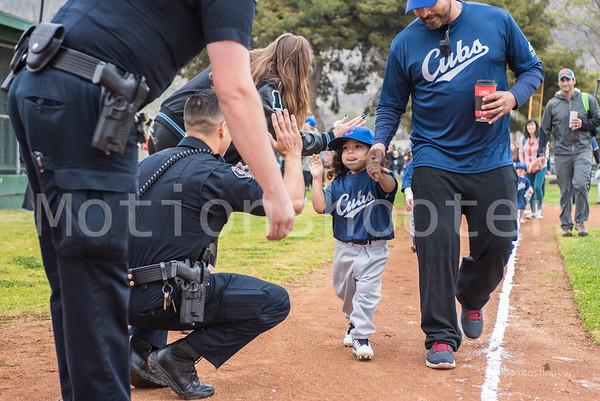 Ventura Pony Baseball 2018