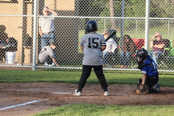 Lakeland Little League 6-20