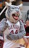 Oak Ridge Mascot. Photo by Ned Jilton II