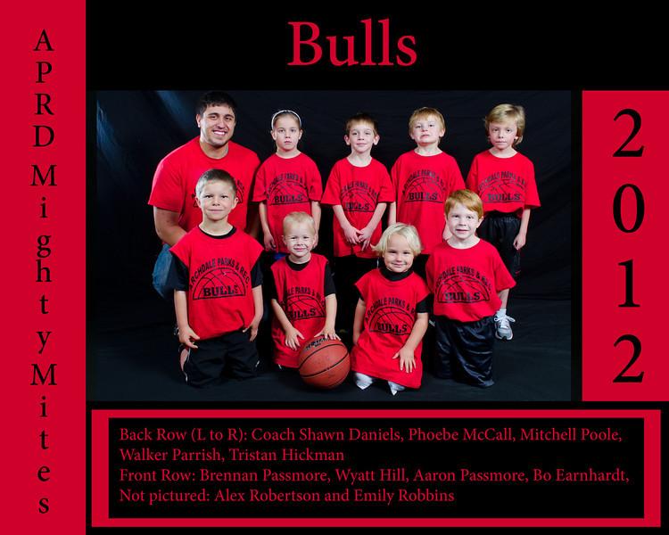 Basketball Samples