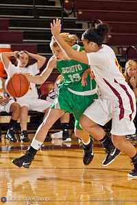 Dublin Scioto High School's Elise Jones (13) tries to get around Westerville North High School's Hannah Ferguson (24) in the first quarter of play Friday night December 16, 2011 at Westerville North High School.  (© James D. DeCamp | http://www.JamesDeCamp.com | 614-367-6366)