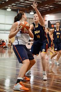 Morgan Pink, Peyton Davis - Logan Thunder v Auburn University Tigers Women's Basketball; Auchenflower, Brisbane, Queensland, Australia; 07 August 2012. Photos by Des Thureson - http://disci.smugmug.com.