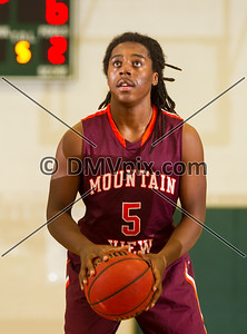 Mountain View vs Lee Boys Varsity (30 Dec 2013)