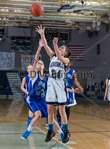 South Lakes @ W-L Girls Freshman Basketball (23 Jan 2015)