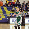 2017 Eagle Rock Girls Basketball vs Wilson Mules