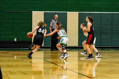 WBHS Girls vs Canfield-36