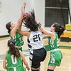 2020 Eagle Rock Girls Basketball vs Ribet Fighting Frogs