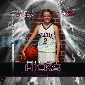 RHicks-amsBanner2x2-2