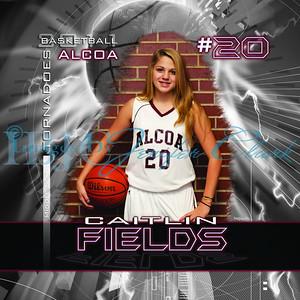 CFields-amsBanner2x2-1