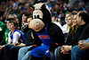 Nov 18, 2012; Auburn Hills, MI, USA; Detroit Pistons mascot Hooper sits with fans during the fourth quarter against the Boston Celtics at The Palace. Detroit won 103-83. Mandatory Credit: Tim Fuller-US PRESSWIRE
