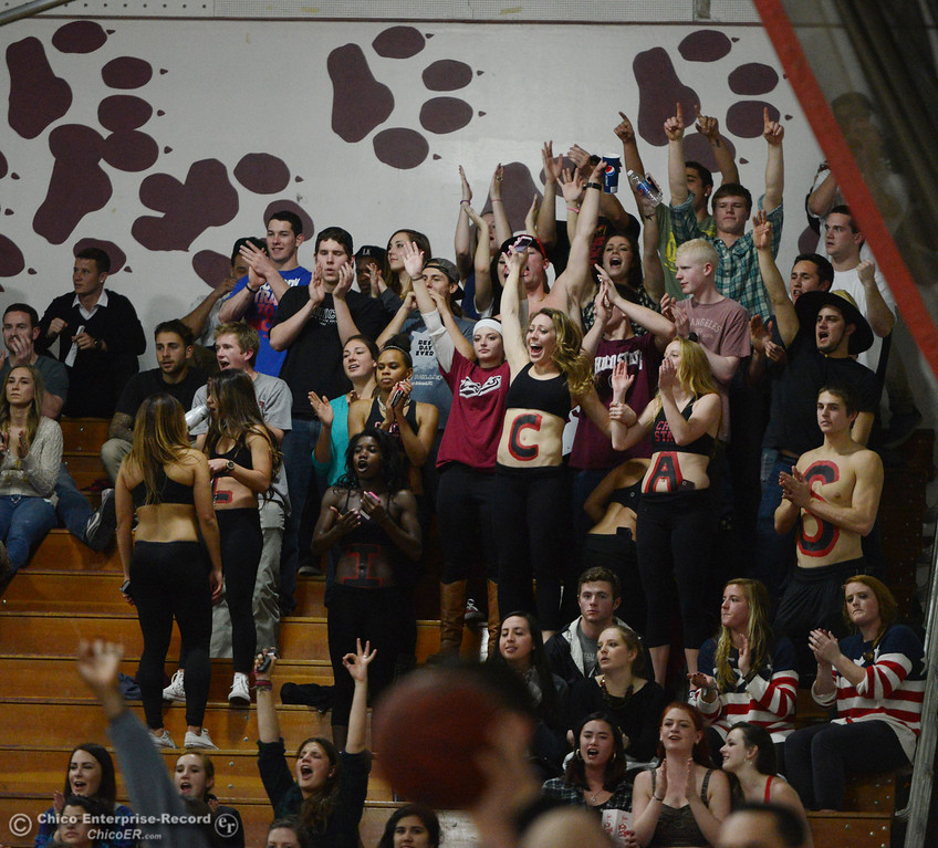 . Chico State fans cheer on against Cal State San Bernardino in the second half of their men\'s basketball game at CSUC Acker Gym Saturday, February 8, 2014 in Chico, Calif.  (Jason Halley/Chico Enterprise-Record)