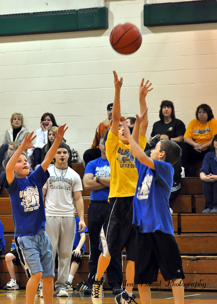 D Little Cougars Basketball