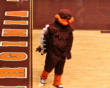 Hokie Bird points to the photographer on a job well done!