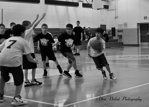 B Little Cougars Basketball