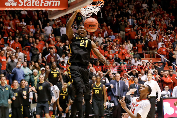 NCAABB: Oregon at Utah
