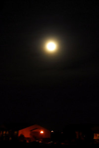 """This is the April 2009 Passover Moon.  All pictures are """"free"""" with the option to buy. Just right-click over the picture you like. Save Picture As: or Copy will work.  Thanks to everyone for allowing me to take your pictures this year.  God's will, see ya next year."""