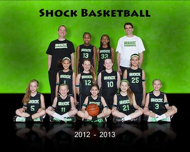 Shock 2013