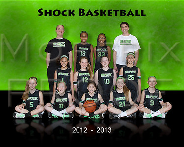Shock 2013 Proofs