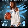 2018 Skyline Basketball Banner Davion Pipkins