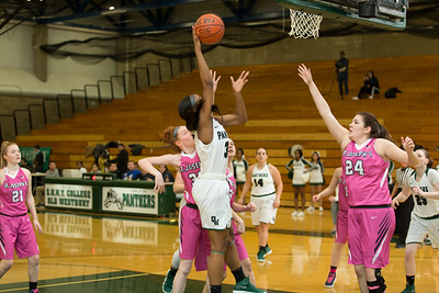 SUNY OW vs St. Josephs | Credit: Chris Bergmann Photography