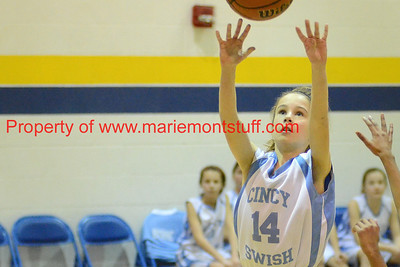 Cincinnati Swish 2012-01-29_15