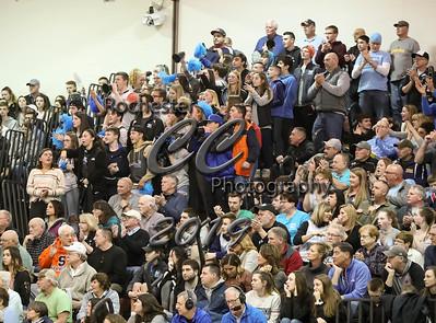 Fans, 0882
