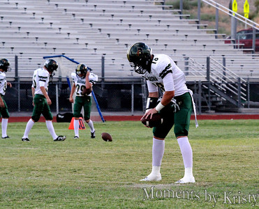 2013 Basha Bears Football