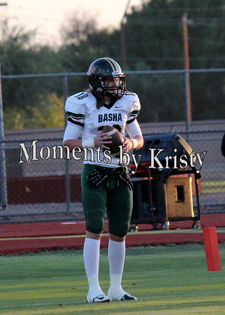 Basha vs Gilbert 2012