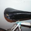 Gitane 1973 TdF, dec 10, 2008