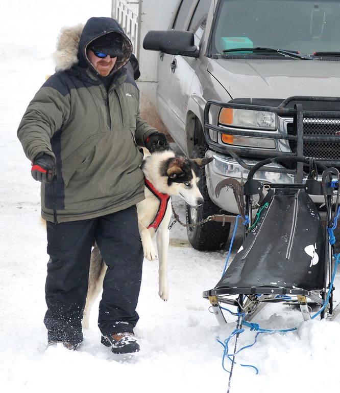 Bud Denega | The Sheridan Press<br /> Allan Berge preps one of his sled dogs during the Bighorn Rush Sled Dog Challenge at Granite Pass Saturday, Dec. 30, 2017.