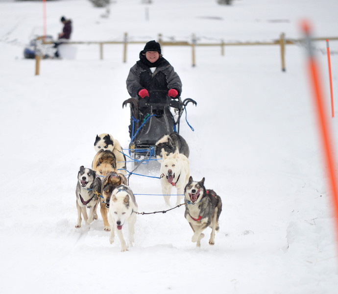 Bud Denega | The Sheridan Press<br /> The first annual Bighorn Rush Sled Dog Challenge ran Saturday and Sunday at Granite Pass.