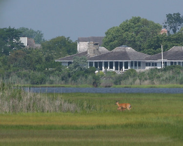A bike ride through Westhampton Beach, NY.