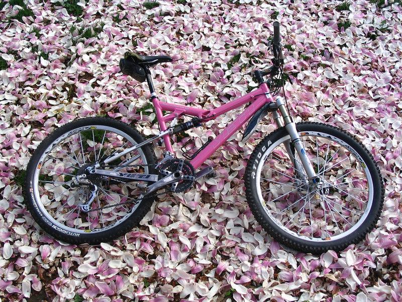 Bike porn.
