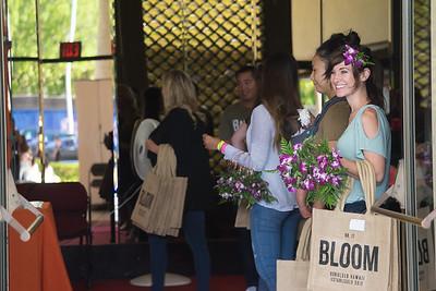 Bloom_6 23 17-27