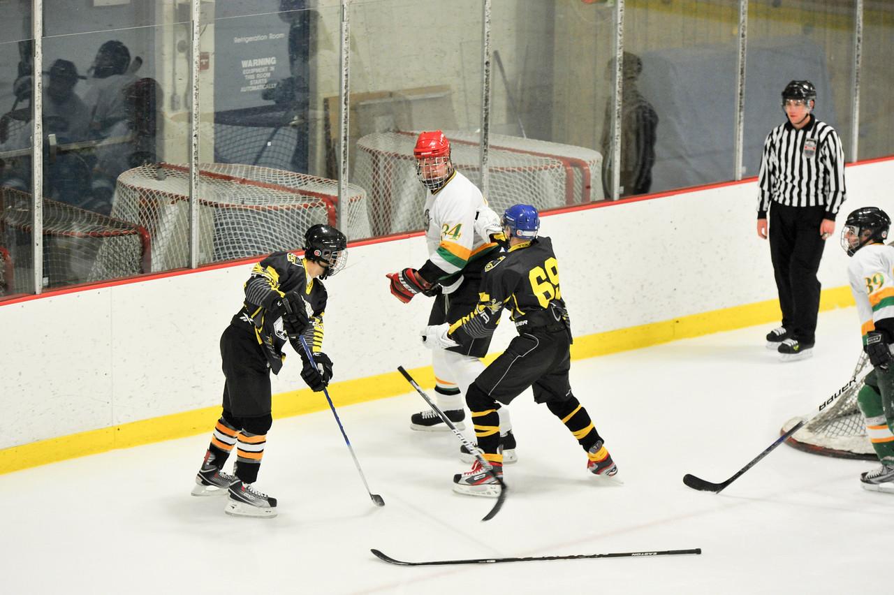 Blue Point Hockey game