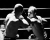 Boxing : 2 galleries with 75 photos