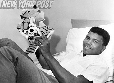 Cassius Clay Relaxes with Stuffed Animals. 1963