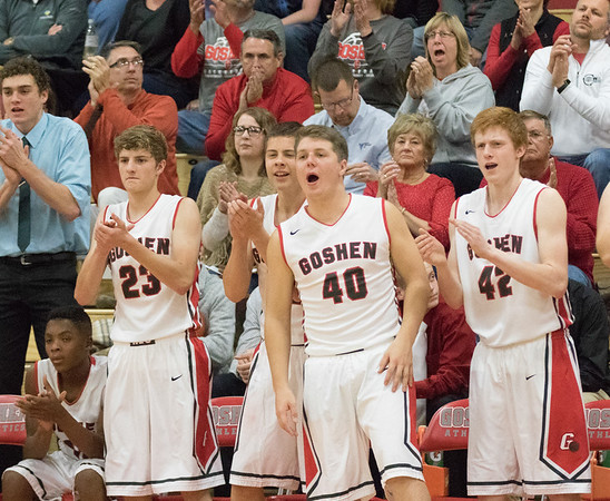 JAY YOUNG   THE GOSHEN NEWS<br /> Goshen bench players and fans cheer a Redhawks' three pointer during the Redhawks' game against Marian on Tuesday evening at GHS.