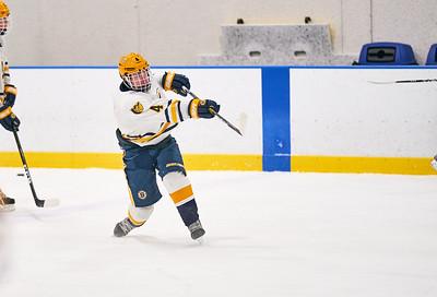 27   Breck HS Boys Hockey 1-21-2020    RobertEvansImagery com IG @RobertEvansImagery