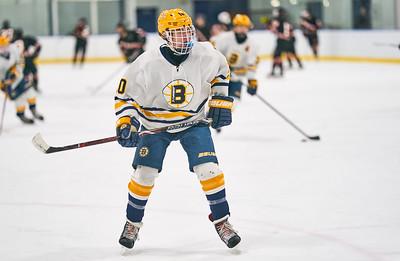15   Breck HS Boys Hockey 1-21-2020    RobertEvansImagery com IG @RobertEvansImagery