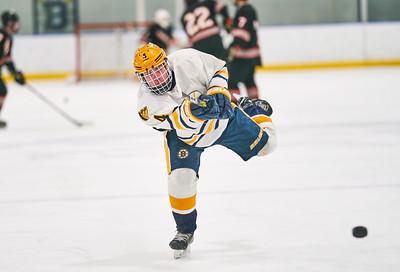 31   Breck HS Boys Hockey 1-21-2020    RobertEvansImagery com IG @RobertEvansImagery